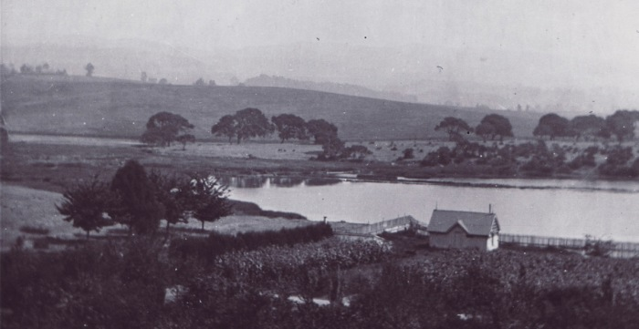 1800s-lake-merritt-left-ear